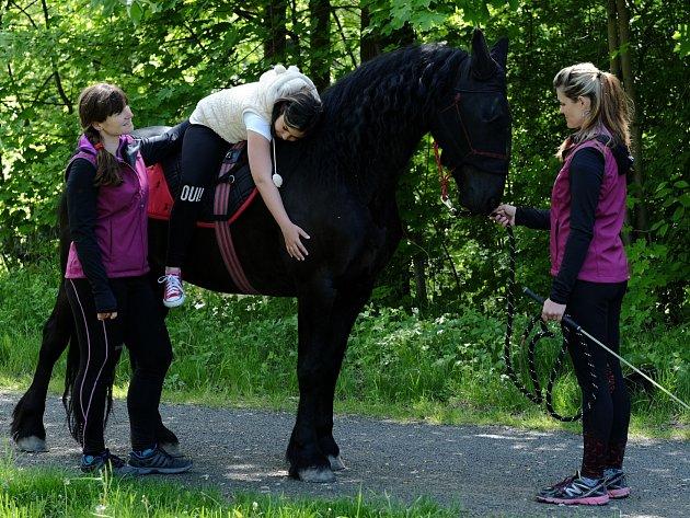 UKÁZKA hipoterapie pomocí vycvičeného koně.