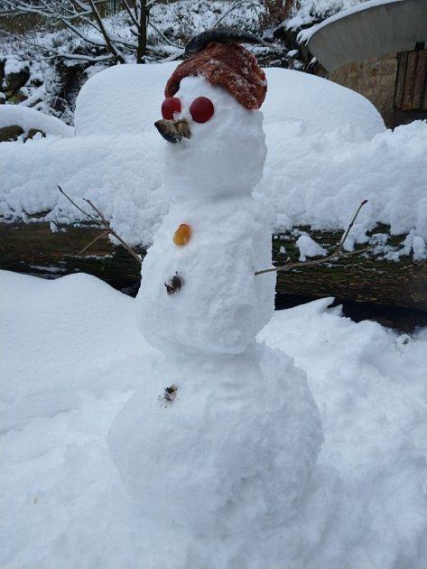 Sněhulák pro Bruna.