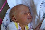 Viktorka Michálková se narodila Janě Michálkové z Malé Veleně 26. září v 11.41 v děčínské porodnici. Vážila 3,12 kg.