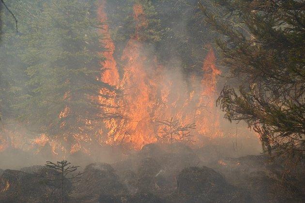 Na Šébru hořely více jak čtyři hektary lesa