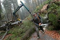 Likvidace škod po vichřici Herwart v národním parku.