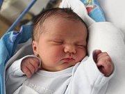 Dominik Karel Šilhavý se narodil Barboře Zárubové z Děčína 10. ledna v 8.20 v děčínské porodnici. Vážil 4 kg.