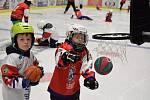TÝDEN HOKEJE. Na děčínský zimní stadion dorazilo 22 dětí.