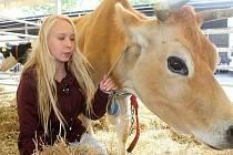 V areálu školy se každý rok koná také oblíbená zemědělská výstava.