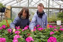 Sedmnáctiletí Tomáš a Patrik si zvolili obor zahradník. Studují prvním rokem a doufají, že obor dodělají a dále se jím budou živit