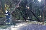 Kvůli stromu sraženému vichřicí nebylo možné projet mezi Varnsdorfem a Krásnou Lípou.