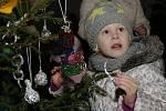 Zámek Děčín, děti ze školek zdobily vánoční stromky na zámeckém nádvoří, 2014.