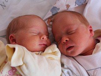 Adélka a Terezka Linhartovy Elisovy se narodily Šárce Linhartové z Dolních Habartic 12. listopadu v 8.08 a 8.11 v děčínské porodnici. Vážily 2,18 kg a 2,25 kg.