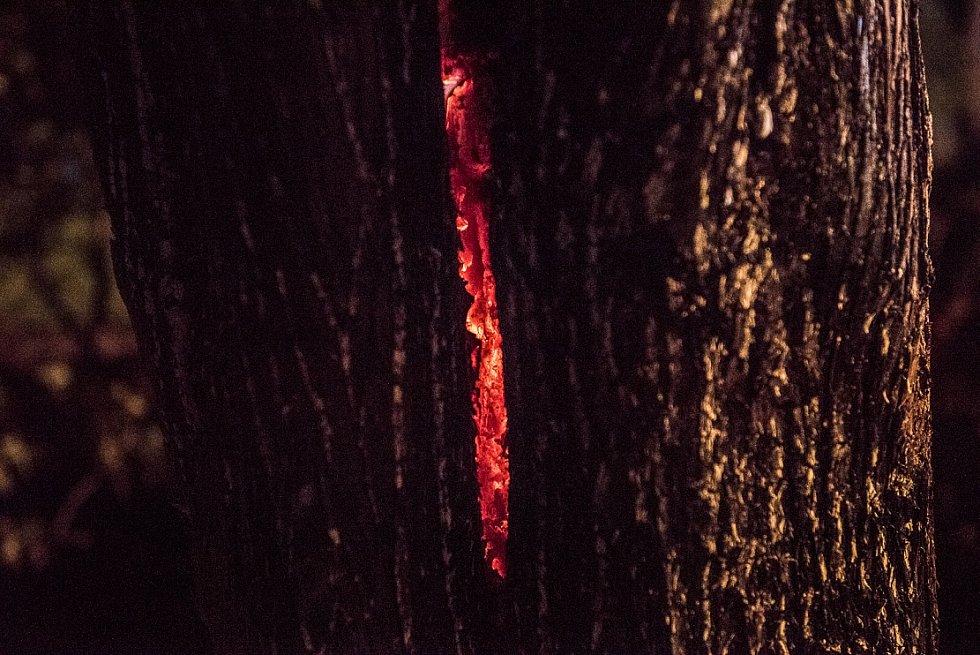 Požár roubenky v Krásné Lípě.