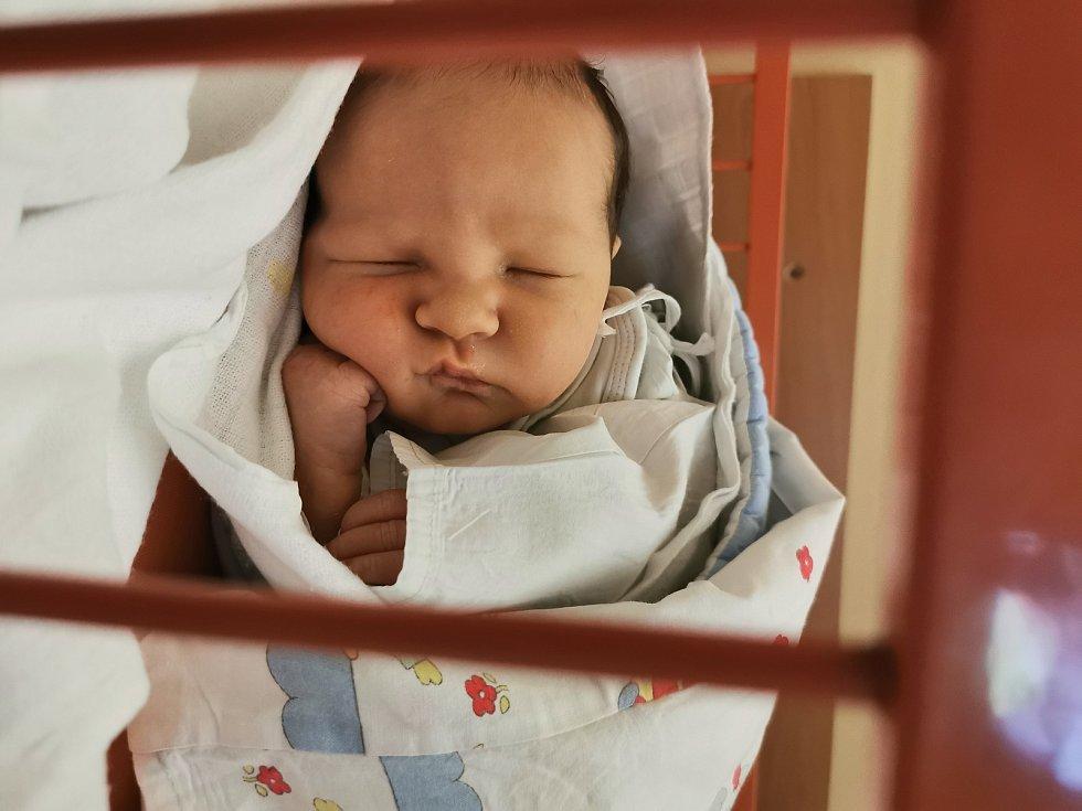 Albert Šerý se narodil Radce Šeré Kučerové 17. února v 9.09 hodin. Měřil 52 cm, vážil 3,64 kg.