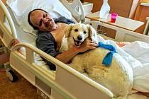POMÁHÁ LIDEM. Rony v rámci canisterapie navštěvuje také děčínskou nemocnici.