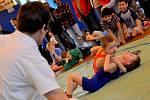 NEZTRATILI SE. Domácí zápasníci vybojovali hned několik medailí.