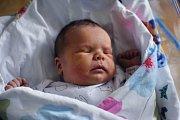 Mamince Leoně Krebsové z Ústí nad Labem se 14. května v 6.06 v děčínské porodnici narodila dcera Johana Krebsová. Měřila 48 cm a vážila 3,19 kg.