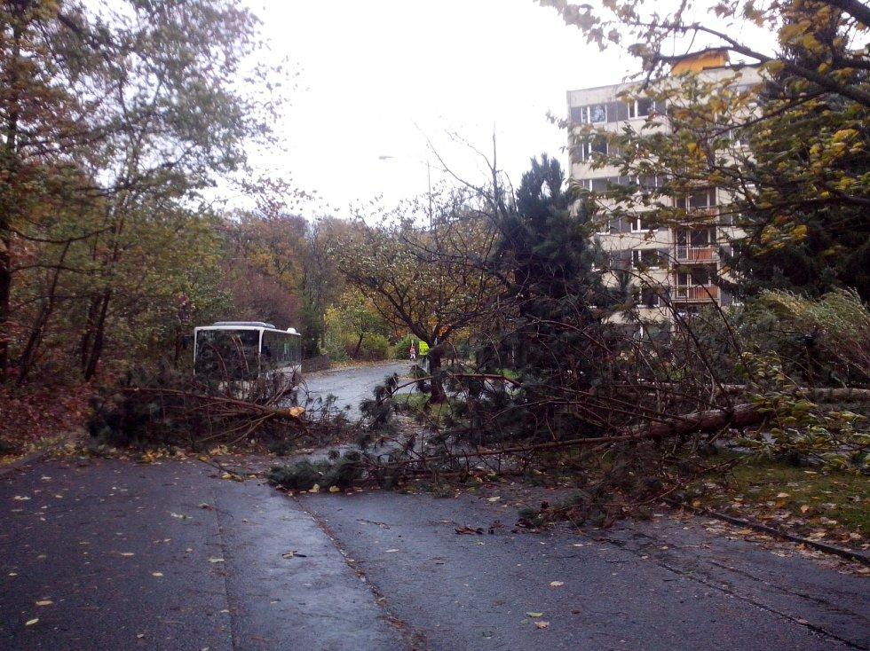Vichřice polámala několik stromů uprostřed sídliště v Želenicích