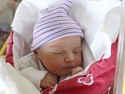Kateřina Pavelková se narodila Pavlíně a Michalovi Pavelkovým z Varnsdorfu 4. listopadu ve 21.43. Měřila 50 cm a vážila 3,85 kg.