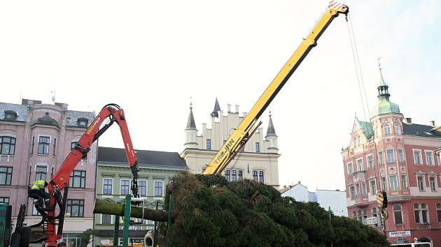 Do Děčína a Rumburku dorazil vánoční strom