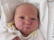 Eliška Černoušková se narodila Pavle Stelmaščukové z Rumburku 5. února. Vážila 4,14 kg a měřila 53 cm.