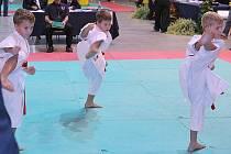Stříbrný kata team Sport Relaxu v akci.