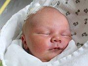 Vojtěch Jakub se narodil Marcele Bačikové a Vojtěchu Ervínovi z Varnsdorfu 12. dubna ve 20:34 v českolipské porodnici. Měřil 52 cm a vážil 3,83 kg.