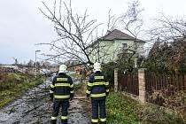 Ve Varnsdorfu v ulici Jiřího z Poděbrad vítr zlomil strom.