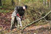 V zoo likvidovali v pondělí následky vichřice. Bylo nutné odstranit spadlé stromy a větve.