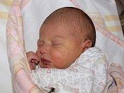 Bohdaně Dvořákové ze Šluknova se 4. října v 11:50 v rumburské porodnici narodila dcera Silvie Bulíčková. Měřila 50 cm a vážila 3,33 kg.