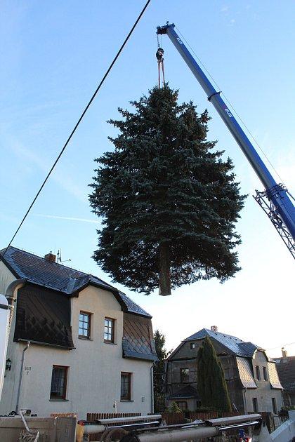 Rumburku věnoval vánoční strom soukromý majitel.