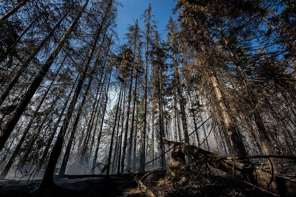 V Zadních Jetřichovicích hoří les, zasahuje vrtulník.