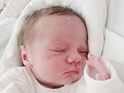 Oliver Grausgruber se narodil 19. srpna v liberecké porodnici Kateřině Bednářové z Varnsdorfu. Vážil 3,10 kg a měřil 50 cm.