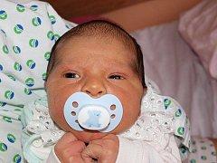 Renatě Karalové ze Šluknova se 18. června ve 22.30 v rumburské porodnici narodil syn Jan Karala. Měřil 50 cm a vážil 3,49 kg.