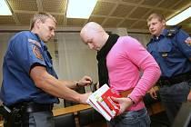 Pavel Švancar u soudu