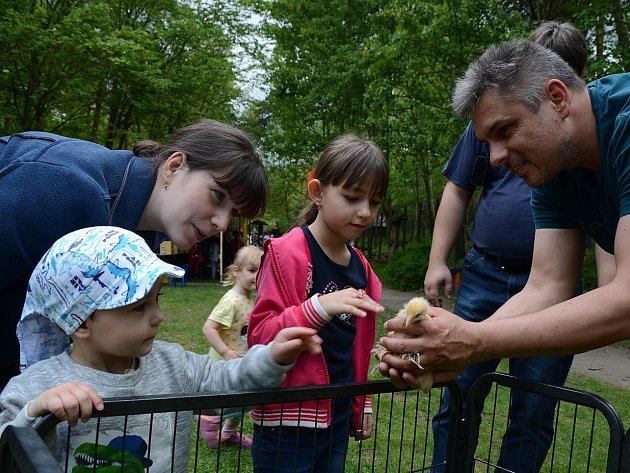 Akce s názvem Dětská zoo proběhla v děčínské zoologické zahradě.