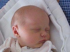 Mamince Martině Novákové z Varnsdorfu se 14. listopadu ve 21:46 hod. narodila dcera Elena Nováková. Měřila 50 cm a vážila 3,1 kg.