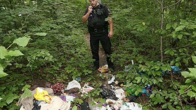 Pokud strážníci někoho při tvorbě černé skládky přistihnou, hrozí mu pokuta.