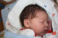 Mamince Šárce Muchové z Děčína se 7. února ve 3.27 narodila v děčínské nemocnici dcera Nikolka Muchová. Měřila 49 cm a vážila 2,91 kg.