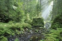 NÁDHERNÁ PŘÍRODA – to je Kyjovské údolí. Neváhejte a vydejte se na výlet.
