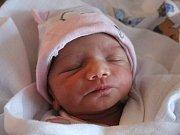 Anička Leová se narodila Andree Leové z Děčína 18. ledna ve 14.20 v děčínské porodnici. Měřila 43 cm a vážila 1,9 kg.
