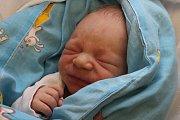 Tomášek Kovárnický se narodil Haně Brázdové z Děčína 17. října ve 21.41 v děčínské porodnici. Vážil 3,17 kg.