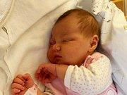 Elleanor Křížová se narodila Kláře Vlčkové z Děčína 26. září ve 12.47 v ústecké porodnici. Měřila 53 cm a vážila 3,94 kg.