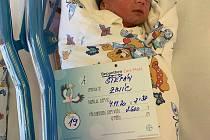 Rodičům Lucii Zajícové a Petru Dorníkovi z Děčína se 4. listopadu v děčínské porodnici narodili synové Štěpán a Vojta Dorníkovi. Štěpán (2,6 kg) se narodil v 8.38.