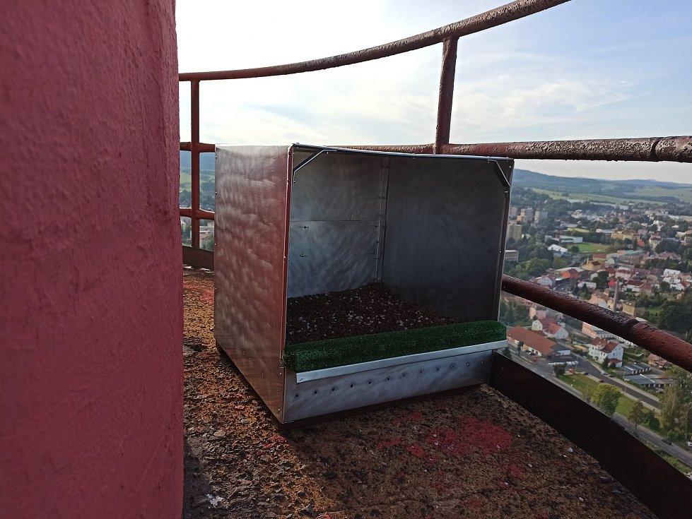Ve Varnsdorfu umístili hnízdo pro sokoly na komín teplárny.
