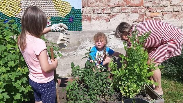 Děti se staraly o zahrádku
