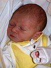 Noel Sebastien Kaňka se narodil Natálii Černé z Varnsdorfu 24.února ve 23.03 v rumburské porodnici. Měřil 50 cm a vážil 3,32 kg.