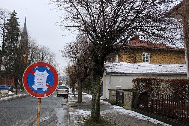 Stromořadí ve Varnsdorfu už nevypadalo dobře. Nahradí jej nová výsadba.