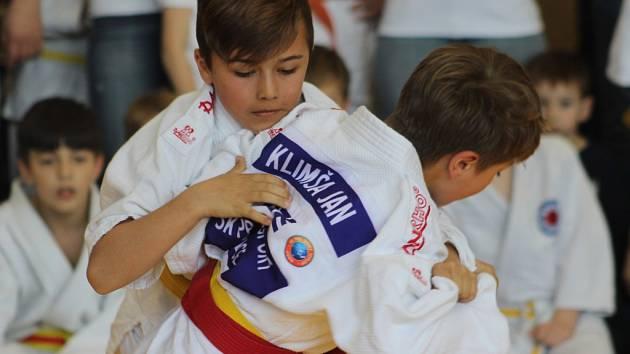 DĚČÍNSKÁ KOTVA 2017 - tradiční a letitý turnaj mládeže v judu se konal v Křešicích u Děčína.