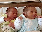 Martin a Filip Rozsypalovi se narodili Petře Rozsypalové z Dolního Podluží 21. listopadu v 8.40 a 8.41 v rumburské porodnici. Martin měřil 44 cm a vážil 2,55 kg a Filip měřil 46 cm a vážil 2,15 kg.