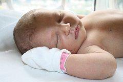 Janě Schmittové z Děčína se 30. června ve 13.40 v děčínské porodnici narodila dcera Jůlie Schmittová. Měřila 54 cm a vážila 4.06 kg.