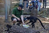 Den adoptivních rodičů v Zoo Děčín.