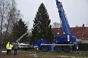 Vánoční strom zdobí od čtvrtka Lužické náměstí v Rumburku.