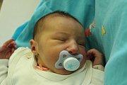 Eleonora Tipanová se narodila Ditě Tipanové ze Šluknova 27. září v 11.09 v děčínské porodnici. Vážila 2,9 kg.